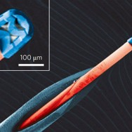 Micro-camera-size-grain-of-salt-standard-syringe-needle