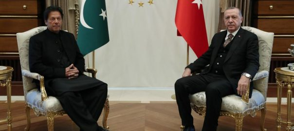 پاک بھارت وزرائے اعظم یو اے ای ولی عہد شیخ محمد بن زید وزیراعظم ترک صدر بھارتی پائلٹ