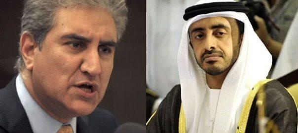 شاہ محمود قریشی وزیر خارجہ شیخ عبداللہ بن زید النہیان دوطرفہ تعلقات پلوامہ واقعہ