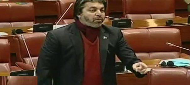 وزیر مملکت پارلیمانی امور علی محمد خان اسرائیل