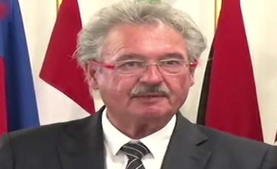 عالمی برادری نے مسئلہ کشمیرپر تحفظات کا اظہار کیا ، وزیر خارجہ لکسمبرگ