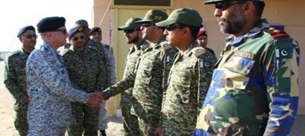 ایڈمرل ظفر محمود عباسی ساحلی کریک ایریا سکیورٹی پاک بحریہ بحری یونٹس نیول ائیرسٹیشن