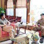 وزیر اعظم سے آرمی چیف کی ملاقات، دفاعی معاملات پر بات چیت