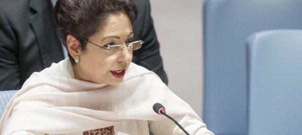 پاکستان  فلسطینی پناہ گزین اسلام آباد  92 نیوز مالی معاونت  ڈاکٹر ملیحہ لودھی