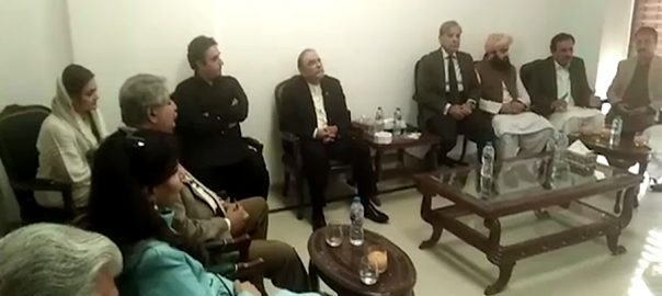 مولانا فضل الرحمان  اپوزیشن کی اے پی سی  اسلام آباد 92 نیوز نون لیگ پیپلزپارٹی ایم ایم اے اے این پی 