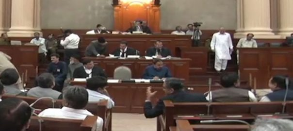 پنجاب اسمبلی کثرت رائے آئندہ مالی سال بجٹ فنانس بل منظور