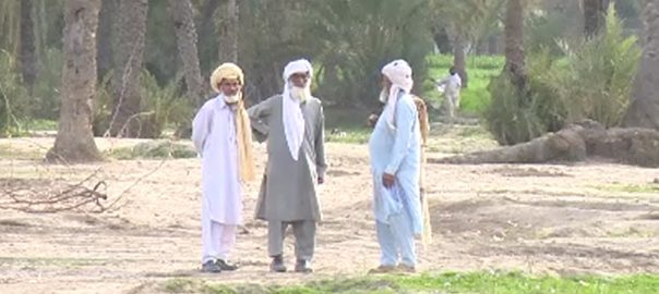 قبائلی اضلاع  جرائم کی شرح  خیبرپختونخوا  پشاور  92 نیوز  سات قبائلی اضلاع 