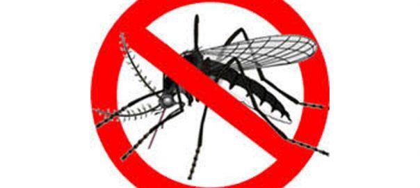 ضلعی انتظامیہ یوم انسداد ڈینگی انسداد ڈینگی یوم  ڈی سی لاہور صالحہ سعید سرکاری دفتر صفائی ستھرائی