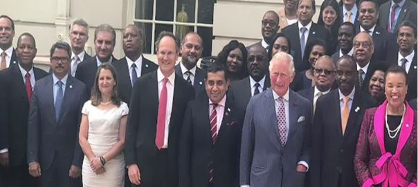 شاہ محمود قریشی کینیڈا وزیر خارجہ کرسٹینا فری لینڈ ملاقات