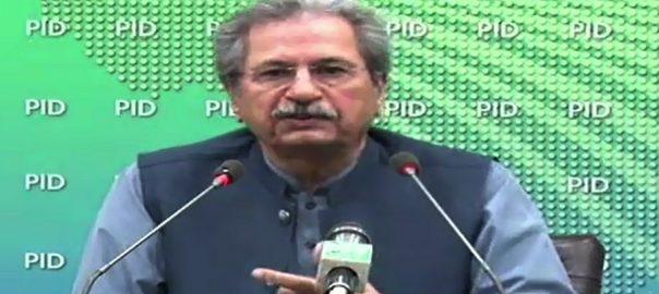 کابینہ اجلاس ویڈیو بات شفقت محمود