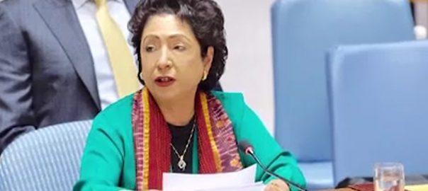 جرائم و دہشتگردی ملیحہ لودھی اسلام آباد  92 نیوز اقوام متحدہ  پاکستان کی مستقل مندوب  سلامتی کونسل  منظم جرائم  اغوا برائے تاوان اسمگلنگ 