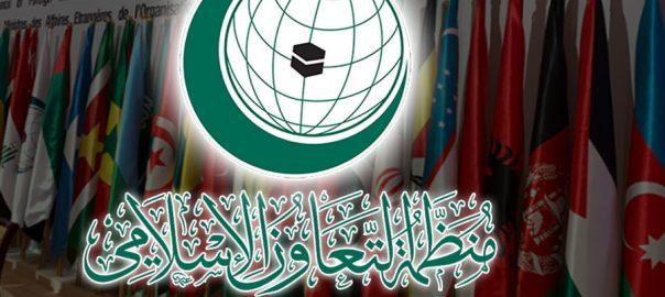 اوآئی سی ہیومن رائٹس کمیشن مقبوضہ کشمیر کرفیو جدہ 92نیوزرپورٹ