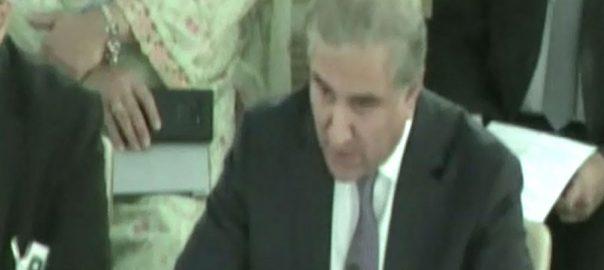 وزیر خارجہ، کشمیریوں، مقدمہ ،انسانی حقوق کونسل ،پیش ، کردیا جنیوا،92 نیوز