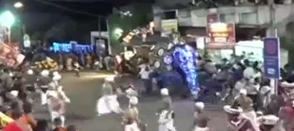 سری لنکا  بپھرے ہاتھی کولمبو  92 نیوز