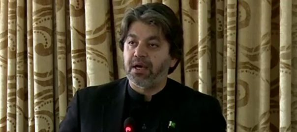 کشمیر ، خصوصی حیثیت ، پاکستان ،وزیر مملکت برائے پارلیمانی امور