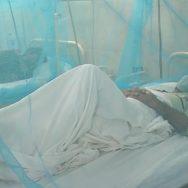 بیشتر مراکزصحت ڈینگی لاہور ویب ڈیسک  ڈینگی بخار