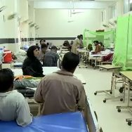 راولپنڈی ، مزید ، 127 ، اسلام آباد ، 198 ، شہری ، ڈینگی بخار ، مبتلا