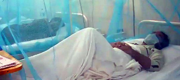 پنجاب ، ڈینگی بخار ،مزید 2 افراد، جان لے لی،لاہور،92 نیوز