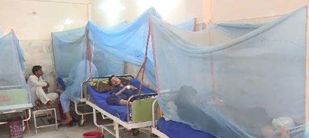 ڈینگی بے قابو،راولپنڈی ،ایک اور مریض ،دم توڑ گیا،لاہور،92نیوز