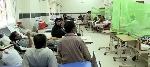 ڈینگی، 40 افراد ،کراچی ،تصدیق