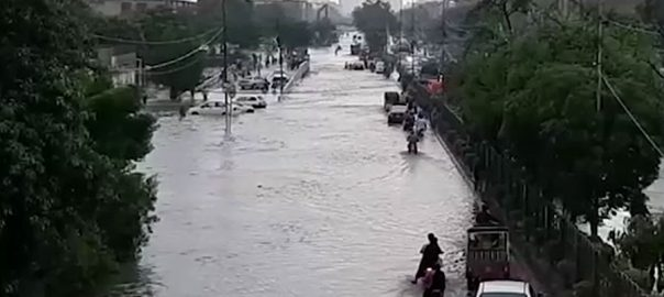 کراچی ، چند ، گھنٹوں ، بارش ، بلدیاتی ، اداروں ، کارکردگی ، پول ، کھول