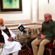 مولانا فضل الرحمان، شہباز شریف ، ملاقات، اسلام آباد دھرنے، کمیٹیاں تشکیل ،لاہور،92نیوز