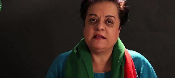فردوس عاشق  شیریں مزاری  اسلام آباد  92 نیوز  وفاقی وزیر 
