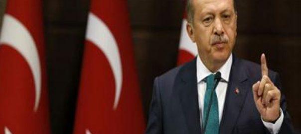 کشمیر اور فلسطین ترک صدر استنبول ویب ڈیسک  رجب طیب اردوان 