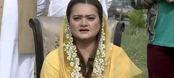 اساتذہ  ڈاکٹر  وزیر اعظم  مریم اورنگزیب لاہور  92 نیوز مسلم لیگ ن 