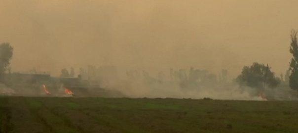 بھارت نئی دہلی  92 نیوز  جنوبی ایشیا  فضائی آلودگی  بھارت  کسان  دھان  فصل کی باقیات  ناسا