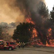 کیلی فورنیا، جنگلات آگ، شدت میں کمی، 92 نیوز