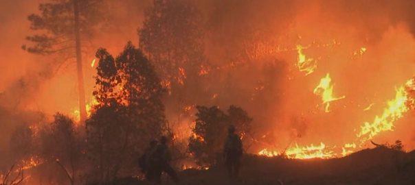 کیلیفورنیا، آگ بھڑک اٹھی، متعدد افراد زخمی، عمارتیں تباہ، واشنگٹن، 92 نیوز