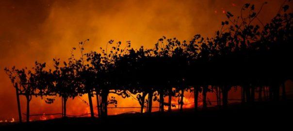 کیلیفورنیا ، جنگلات ، آگ ، تباہی ، ہزاروں ایکڑ ، رقبے ، گھر ، مجبور