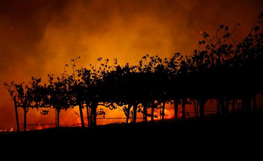 کیلیفورنیا کے جنگلات میں آگ نے تباہی مچا دی ، 50 ہزار لوگ گھر چھوڑنے پر مجبور