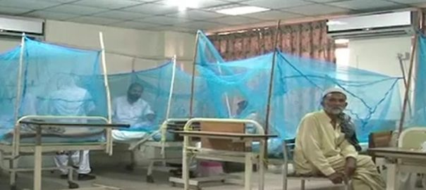 اسلام آباد  92 نیوز ملک بھر  ڈینگی بے قابو  روز بروز ڈینگی مچھر قاتلانہ وار