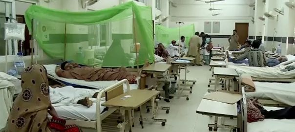 پنجاب  ڈینگی  محکمہ صحت لاہور  92 نیوز