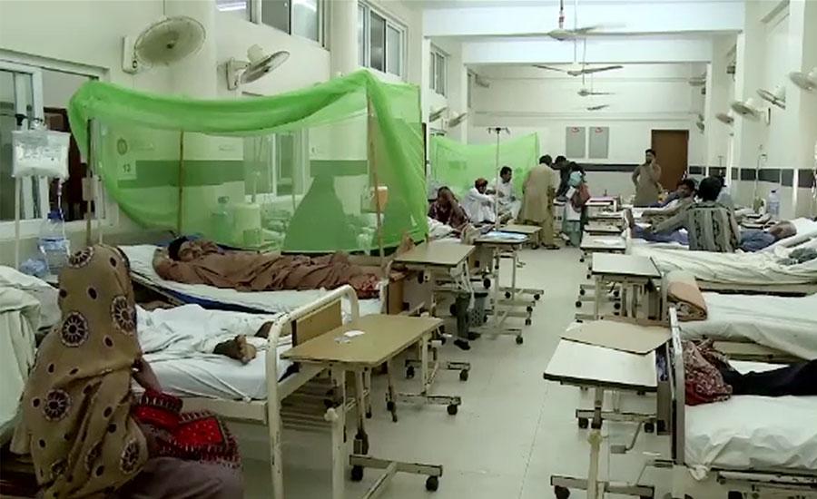 پنجاب کے سرکاری اسپتالوں میں ڈینگی کے 361 مریض زیر علاج ہیں ، محکمہ صحت