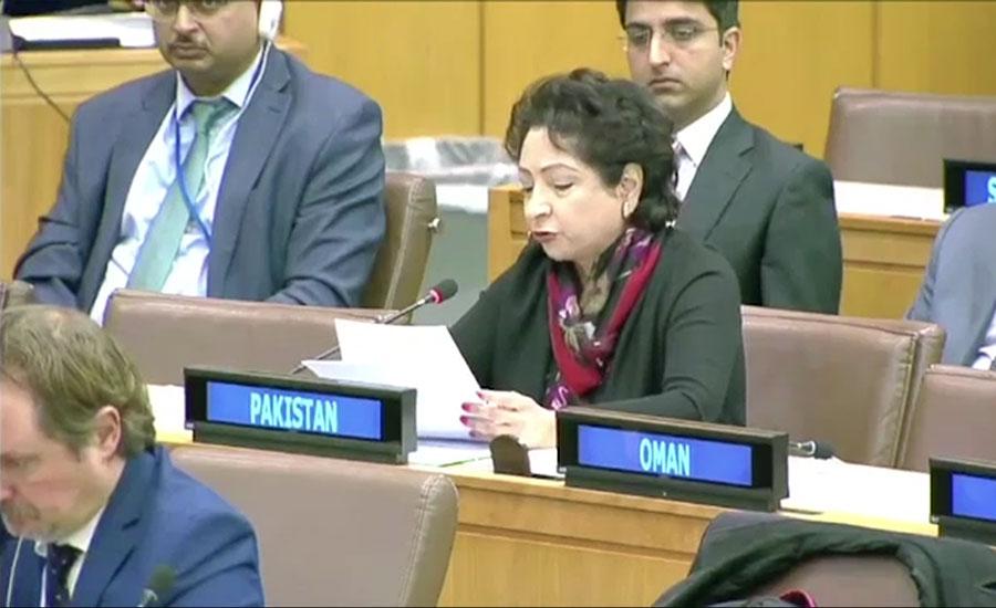 عالمی برادری اور اقوام متحدہ مسئلہ کشمیر کے حل میں کردار ادا کرے، ملیحہ لودھی