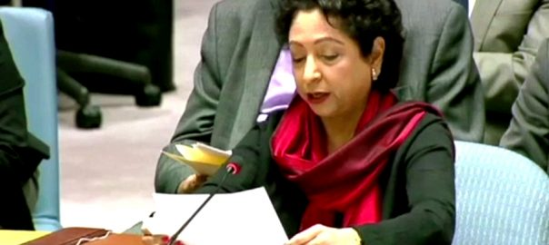 پاکستان  مسلم امہ  ملیحہ لودھی  نیو یارک  92 نیوز  سلامتی کونسل  مشرق وسطیٰ