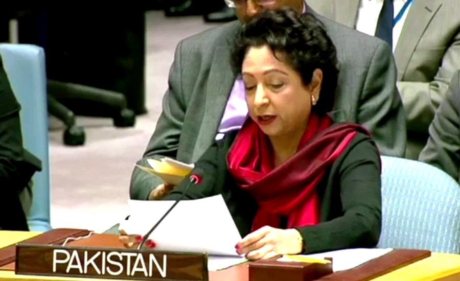 پاکستان مسلم امہ میں اتحاد کیلئے کوششیں کر رہا ہے ، ملیحہ لودھی