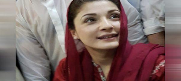مریم  ضمانت پر رہائی  متفرق درخواست  نیب  لاہور  92 نیوز 