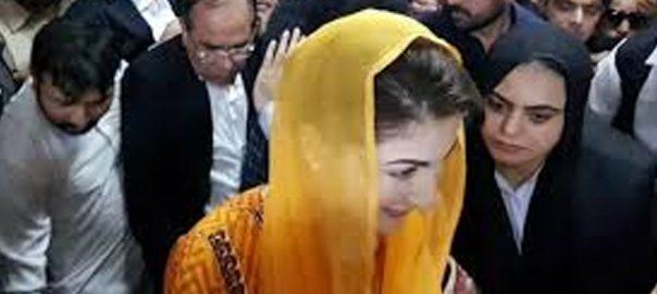 مریم نواز  درخواست ضمانت  کل تک ملتوی  لاہور  92 نیوز لاہور ہائیکورٹ  جسٹس علی باقر نجفی  دو رکنی بینچ