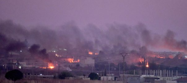 شام ، ترک فوجی آپریشن ، 6 شہری جاں بحق، 109 دہشتگرد ہلاک ، دمشق ، 92 نیوز