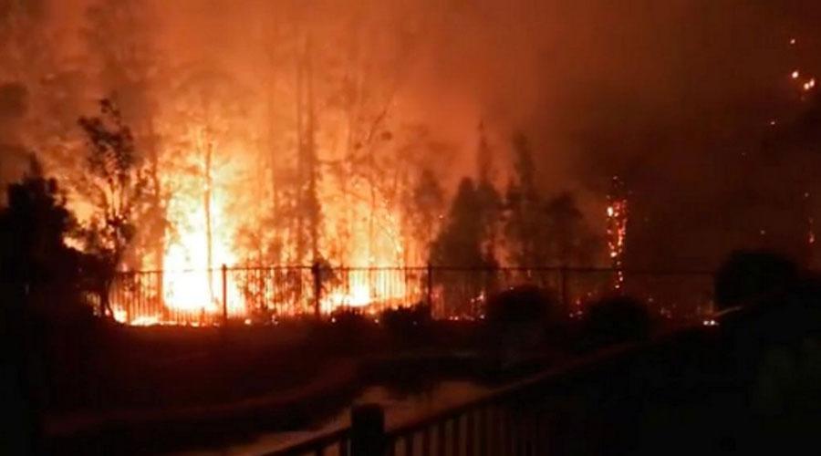 آسٹریلیا میں جھاڑیوں کی آگ شدت اختیار کر گئی، تین افراد ہلاک