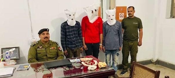 لاہور ، پولیس ، جرائم پیشہ افراد ، کریک ڈاؤن ، چوریاں ، 3 رکنی ، گینگ ، گرفتار