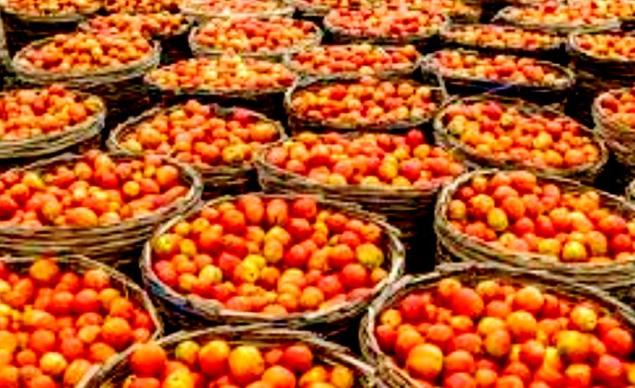 ایران سے درآمد کے باوجود ٹماٹر سستا نہ ہو سکا