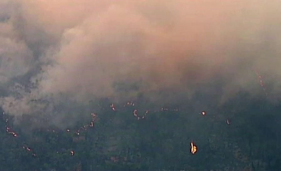 آسٹریلیا میں جنگلات اور جھاڑیوں میں لگی آگ بے قابو