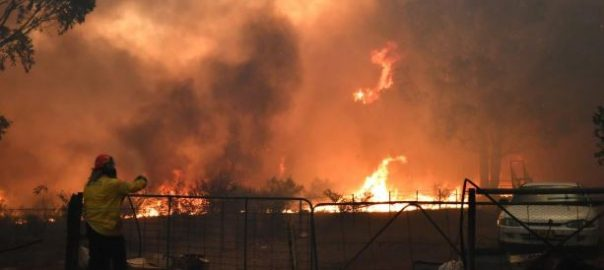نیو ساؤتھ ویلز، جھاڑیوں میں آگ، تباہی، ایمرجنسی نافذ، 92 نیوز