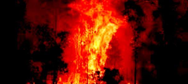 آسٹریلیا  آگ کی تباہ کاریاں  سڈنی  92 نیوز