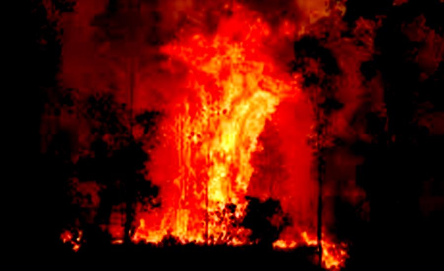 آسٹریلیا کے جنگلات میں لگی آگ کی تباہ کاریاں جاری